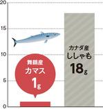 グラフ:舞鶴産カマス1g、カナダ産ししゃも18g